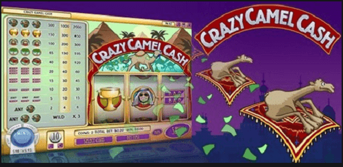 Camel slot game review