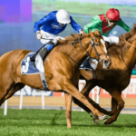 Drug Reform on Horse Racing Criticised