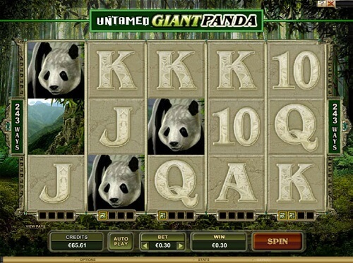 Untamed Giant Panda Slot Reels