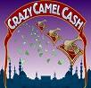 crazy-camel-cash-slot