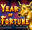 Year of Fortune Slot