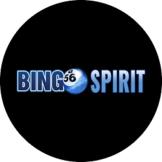 Bingo Spirit Casino US