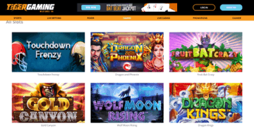 slots at tiger gaming