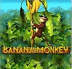 Banana Monkey Slot
