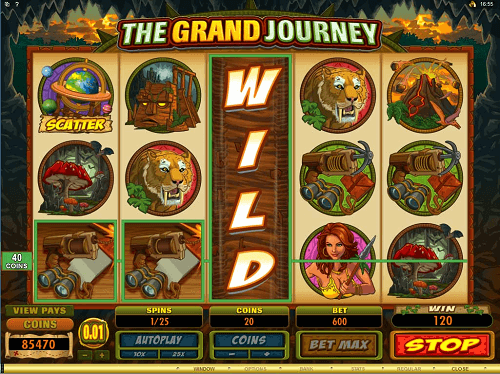 slots-features-wild-symbol