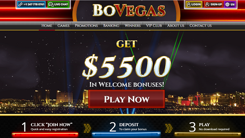 bovegas casino pays the most