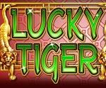 lucky-tiger-rtg-slot