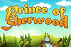 Prince Of Sherwood Slot Review