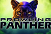 Prowling Panther Slot Review & Rating